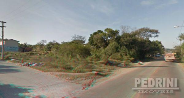 Terreno, Campo Novo, Porto Alegre (4010)