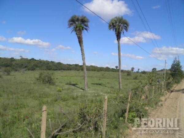 Pedrini Imóveis - Sítio, Sitio São José, Viamão - Foto 2