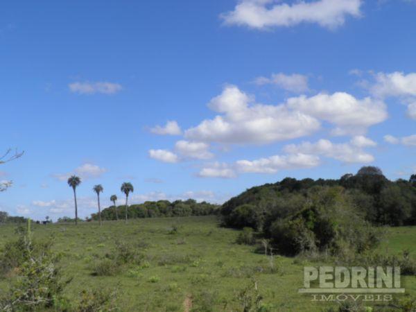 Pedrini Imóveis - Sítio, Sitio São José, Viamão - Foto 3