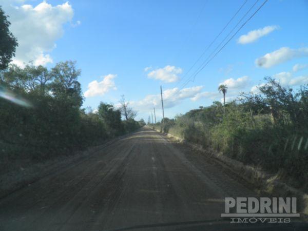 Pedrini Imóveis - Sítio, Sitio São José, Viamão - Foto 6