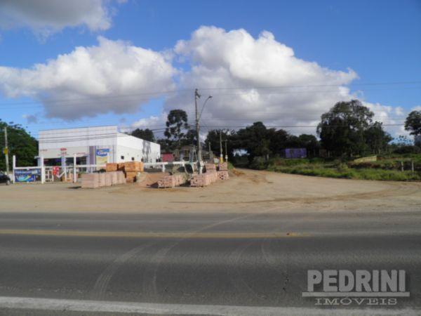 Pedrini Imóveis - Sítio, Sitio São José, Viamão - Foto 7