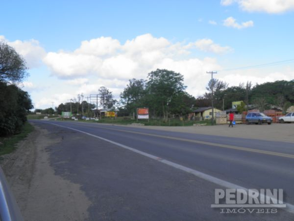 Pedrini Imóveis - Sítio, Sitio São José, Viamão - Foto 8