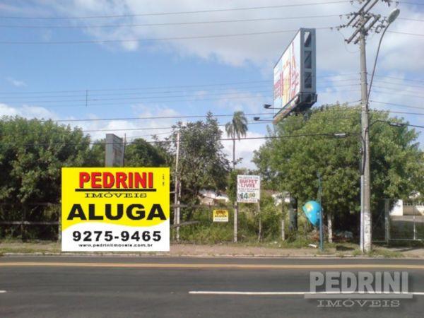 Pedrini Imóveis - Terreno, Ipanema, Porto Alegre
