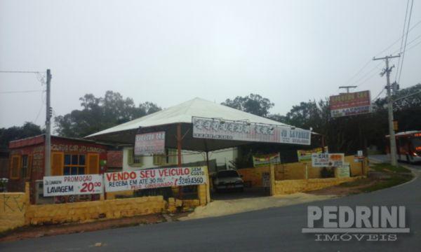 Terreno, Belém Velho, Porto Alegre (4487) - Foto 2