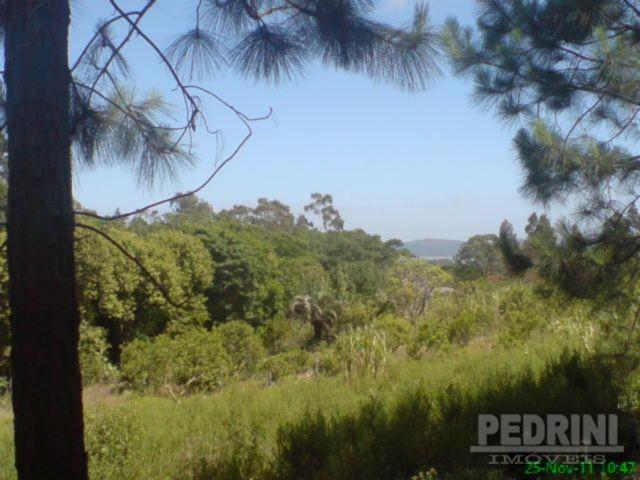 Sitio São Jose - Terreno, Cantagalo, Viamão (2799) - Foto 3