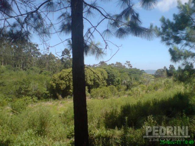 Sitio São Jose - Terreno, Cantagalo, Viamão (2799) - Foto 4