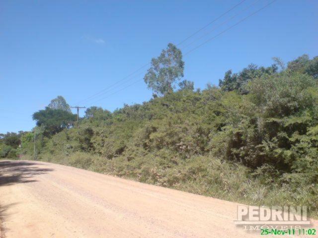 Sitio São Jose - Terreno, Cantagalo, Viamão (2799) - Foto 5