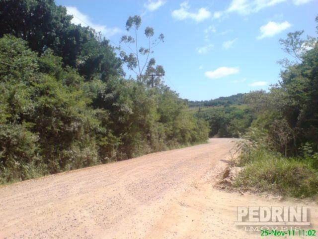 Sitio São Jose - Terreno, Cantagalo, Viamão (2799) - Foto 6