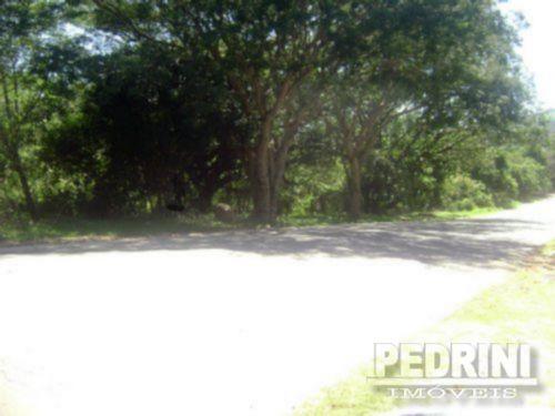 Terreno, Vila Nova, Porto Alegre (3798)