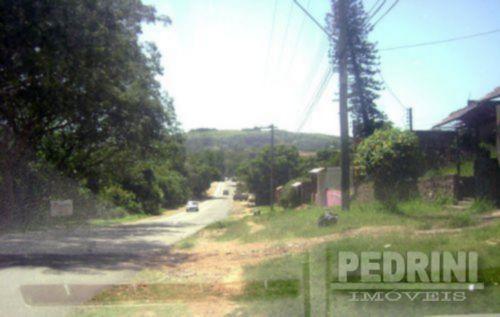 Terreno, Vila Nova, Porto Alegre (3798) - Foto 4